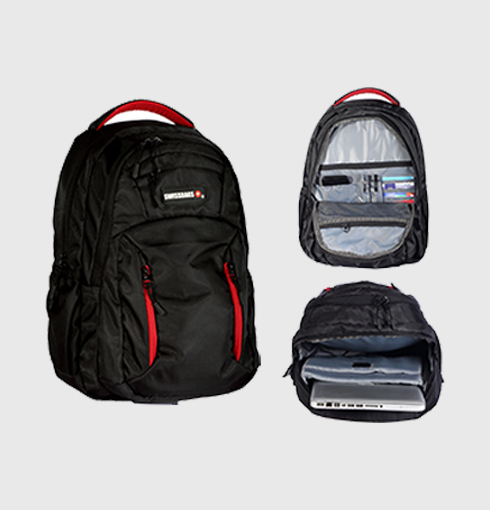 The Travel Backpack